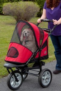 If you have a medium sized dog that weighs up to 50 lbs, the Pet Gear AT3 Pet Stroller is worth looking into. #petstroller #dogstrollers