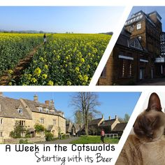 Short of ideas for the Cotswolds, We've got a list of free things to do!
