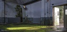 broadloom green | kamerbreed groen - #GdeBfotografeert