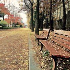 ÇİFTE PEYNİRLİ KEKLER | yesilkivi