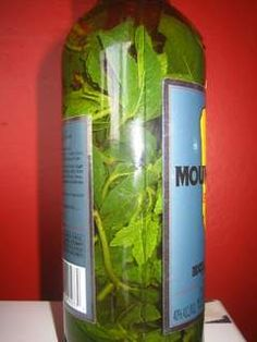 Mint infused rum.  Add lime zest and you're ready for mojitos.