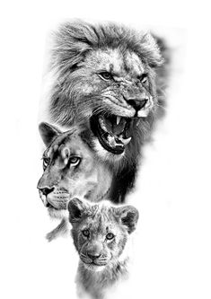 Lion Head Tattoos, Dad Tattoos, Family Tattoos, Arm Tattoos For Guys, Tiger Tattoo Sleeve, Lion Tattoo Sleeves, Best Sleeve Tattoos, Lion Images, Lion Pictures