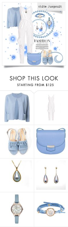 """Jumpsuit With Leg Pockets"" by ohlmanvickie ❤ liked on Polyvore featuring Hemisphere, Bionda Castana, CÉLINE, Emporio Armani and ASHA"