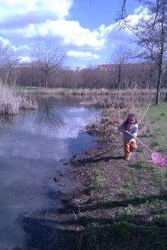 Valbyparken er et stort naturskønt område med store søområder. Dette er et fantastisk sted at fiske.