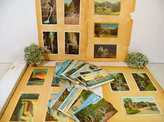 Antique Post Cards Collection of 130 Pieces  by DivineOrders
