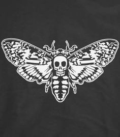 Death's Head Moth