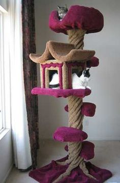 This cat tree is perfect for cats to just lounge around. This cat tree house even looks like a tree! Cat Scratching Tree, Long Cat, Diy Cat Tree, Cat Towers, Creation Deco, Cat Room, Cat Condo, Pet Furniture, Buy A Cat