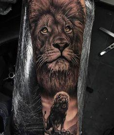 50+ best Lion Pictures