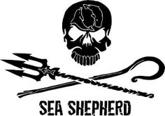 Crewing at Sea Become a Shepherd of the Sea! Sea Shepherd is looking for dedicated individuals to crew aboard our ocean-going ships. Volunteer to be a crew member on one of Sea Shepherd's ves… Blackfish Documentary, Sea Shepherd, Tattoo Inspiration, Worthless, Points, Car Stickers, Volunteers, Scuba Diving, Silhouette Cameo