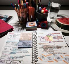 ||| student, school, notes, notespiration, inspo, inspiration, university, college, desk, study