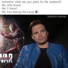 02e7fda1e77b22df949002ee014bed9e sebastian stan meme marvel avengers sebastian stan the martian gif google search sebastian's,Sebastian Meme