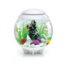 biOrb Halo 30 Liter / 8 Gallon All-in-One Acrylic Aquarium Kit with Multicolor Light - White Aquarium Lamp, Acrylic Aquarium, Aquarium Heater, Aquarium Kit, Glass Aquarium, Aquarium Supplies, Tropical Aquarium, Aquarium Lighting, Aquarium Design