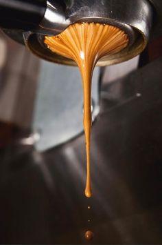 Extraction sous pression, la magie de l'espresso et sa soyeuse crema... Rien qu'à la voir c'est délicieux !!!