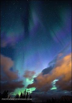 Canmore Auroras - Canmore Alberta, Canada - Dani-Lefrancois Photography
