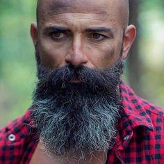 for men who love long bearded men Beard And Mustache Styles, Beard No Mustache, Beard Styles, Bald With Beard, Bald Men, Epic Beard, Sexy Beard, Hipster Noir, Attitude
