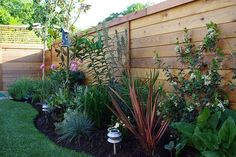 A variety of low-maintenance and drought-tolerant plants grow near the back fence. Description from pinterest.com. I searched for this on bing.com/images