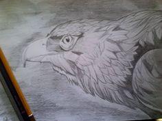 Image result for imagini vulturi pictati acrilic
