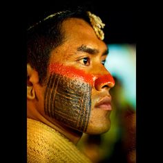 Kayapo Warrior,  Mato Grosso State, Brazil...