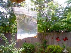 Marre des mouches qui vous tournent autour ? C'est vrai, impossible de profiter du beau temps sans qu'elles viennent se poser sur nous ! Mais pas la peine d'utiliser un insecticide comme le Raid pour autant. Non seulement c'est plein de produits toxiques pour vous et votre famille, mais en plus ce n'est pas donné... Heureusement, il existe un répulsif ULTRA efficace et sans produits toxiques pour facilement repousser les mouches. Tout ce dont vous avez besoin, c'est d'un sac