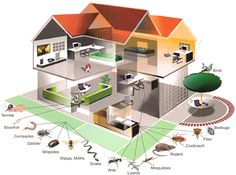 Protect ur Home