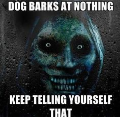 Dogs bark at nothing. Keep telling yourself that…