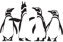 Penguin pool - Arup's global creative events series designed to inform, inspire and entertain.