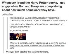 I feel the same. If I were to go to Hogwarts, I would be excited to learn about magic and do my magic homework for my magic classes... I would be Hermione.