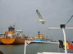 Port scenery - © Sabrina Ide - 2012