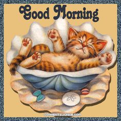 Good Morning cute cat gif kitty good morning seashell good morning greeting