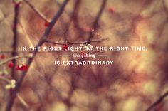 """""""in the right light, at the right time, everything is extraordinary."""" (aaron rose)"""