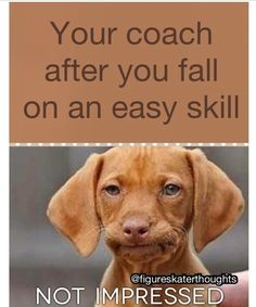 Funny ice figure skating meme http://www.goodnetballdrills.com/5-netball-defence-drills-tips-tactics/