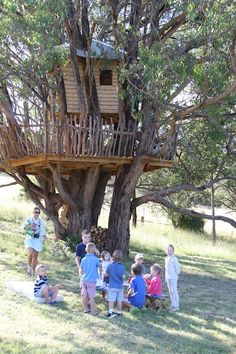 What a grand tree house!! O how I want one someday!