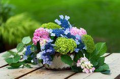 Beautifully natural! Master Gardener at Home - Slide Show - NYTimes.com