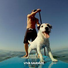 O stand up paddle é definitivamente o esporte do verão, tendo virado uma verdadeira febre nas praias brasileiras. Trata-se de uma variação do surfe, onde o praticante deve ficar de pé na prancha e movimentar-se sobre a água com a ajuda de um remo.