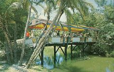 Rainbow Bridge to the Children's Zoo at the old Crandon Park Zoo | Key Biscayne