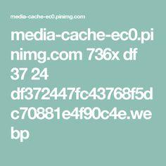 media-cache-ec0.pinimg.com 736x df 37 24 df372447fc43768f5dc70881e4f90c4e.webp