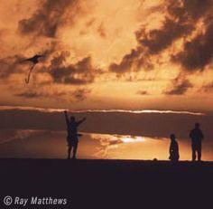 Jockey's Ridge State Park- Nag's Head- Biggest sand dune on the east coast, hiking, kites, etc.