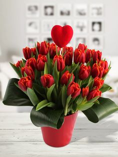 Bakker Flowers | Valentijnstulpen - Bloemen