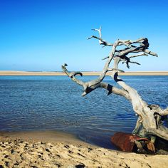 Sodwana South Africa
