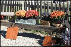 Flowers/containers