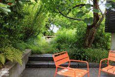 Creating a Secret Garden in a Small Space