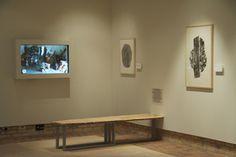 "Bryan Nash Gill - ""Woodcut"", Chicago Botanic Garden, Chicago, Illinois, 2013"