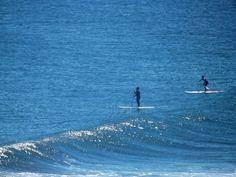 Surfistas en Punta de Lobos, Pichilemu