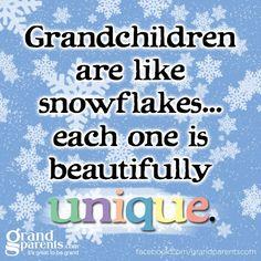 Grandchildren are like Snowflakes