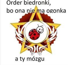 Fb Memes, Funny Memes, Polish Memes, Aesthetic Memes, Mood Pics, Meme Faces, Reaction Pictures, Funny Photos, Emoji