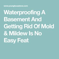 Waterproofing A Basement And Getting Rid Of Mold & Mildew Is No Easy Feat