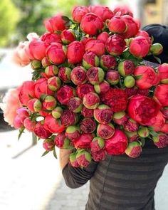 Beautiful Flower Arrangements, Beautiful Flowers, Peonies Bouquet, Strawberry, Fruit, Plants, Kisses, Flowers, Blowing Kisses