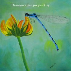 Original oils on large stretched canvas dragonfly by ArtByKatieK, $225.00