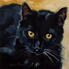 images of black cats - Google Search