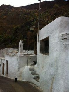 Casitas típicamente alpujarreñas. Alboloduy. Alpujarra. Granada, Mount Rushmore, Mountains, Artwork, Nature, Travel, Turismo, Little Cottages, Art Work